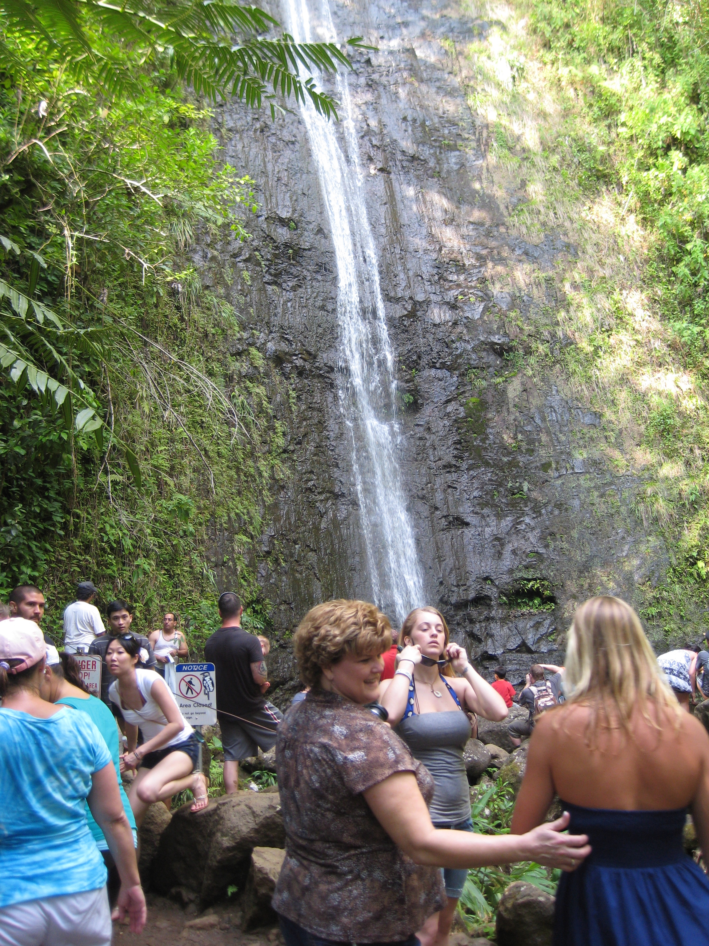 Paradise in the Valley: Manoa Falls Hike | Hiking Hawaii